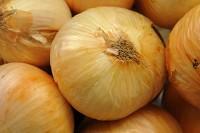 [ Onion ]